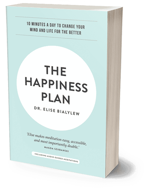 The-Happiness-Plan-Elise-Bialylew-Book-4-480x609